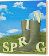Spring Wellies Wood Print