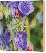 Spring Wild Flower Wood Print