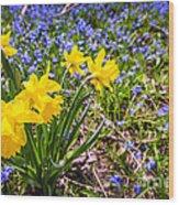 Spring Wildflowers Wood Print