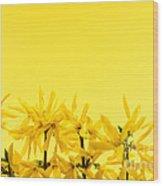 Spring Yellow Forsythia  Wood Print