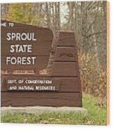 Sproul State Forest Wood Print