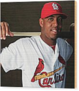 St. Louis Cardinals Photo Day Wood Print