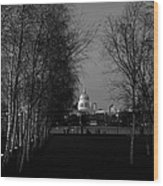 St Paul's With Silver Birches Wood Print