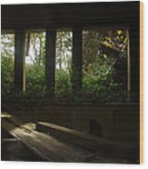 St. Peter's Seminary Wood Print by Peter Cassidy