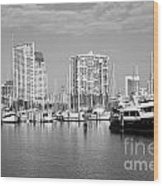 St Petersburg Yacht Basin Wood Print