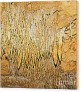 Stalactite Formations In Florida Wood Print