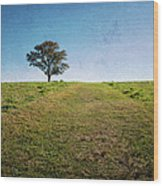 Stands Alone Wood Print