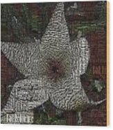 Star Fish Cactus  Wood Print