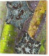 Starfish On Neptune Grass Wood Print