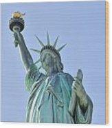 Statue Of Liberty Closeup  In New York City Manhattan Wood Print by Songquan Deng