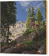 Steep Mountain Hike Wood Print by Michael J Bauer
