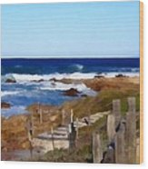 Steps To The Sea Wood Print by Barbara Snyder