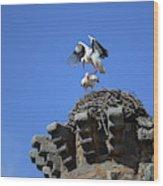 Storks On Top Of Valdecorneja Castle Wood Print