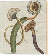 Strange Worms Wood Print