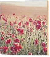 Stunning Poppy Field Landscape Under Summer Sunset Sky With Cros Wood Print