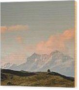 Stupas And The Himalayas Wood Print
