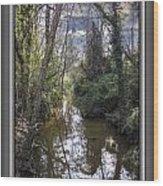 Suburban Jungle Wood Print