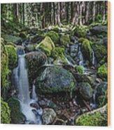 Sul Duc Creek Wood Print