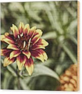 Summer Jardin Wood Print