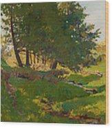 Summer Near Beaupre Wood Print