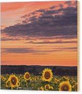 Sun Over Sun Wood Print