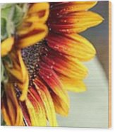 Sunflower Named The Joker Wood Print