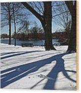 Sunshine And Shadows Wood Print