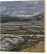 Swaledale Yorks Dales Wood Print