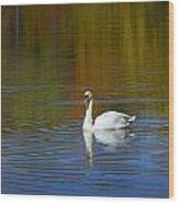 Swan On Wintergreen Lake Wood Print