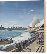 Sydney Harbour In Australia By Day Wood Print