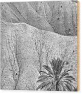 Tabernas Desert Wood Print