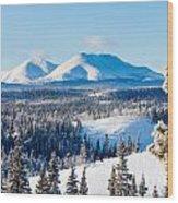 Taiga Winter Snow Landscape Yukon Territory Canada Wood Print