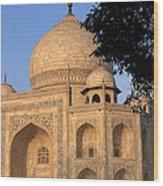 Taj Mahal In Evening Light Wood Print