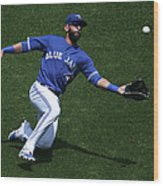 Tampa Bay Rays V Toronto Blue Jays Wood Print