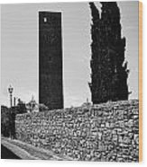 Tarquinia Muro Di Cinta Cipressi Torre Lampione Wood Print