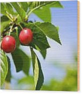 Tart Cherries Wood Print