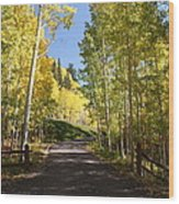 Telluride Colorado Fall Wood Print by Michael J Bauer