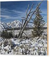 Tetons In The Distance Wood Print