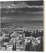 The Alhambra And Albaycin In Granada Wood Print