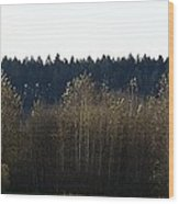 The Back Acres Wood Print