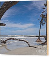 The Beach At Hunting Island State Park Wood Print