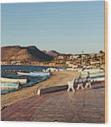The Beachside Strolling Malecon Wood Print
