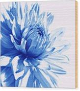The Blue Dahlia Flower Wood Print
