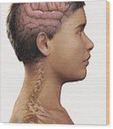 The Brain Child Wood Print