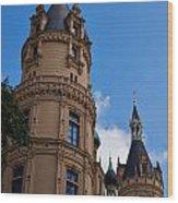 The Castle Of Schwerin Wood Print