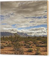 The Desert Southwest  Wood Print