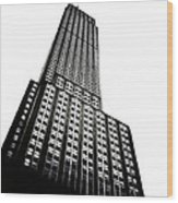 The Empire State Building Wood Print