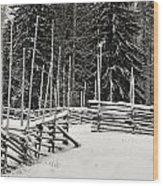 The Fence Of Kovero Wood Print