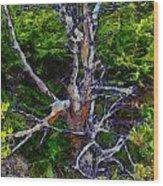The Graceful Dead Detail Wood Print