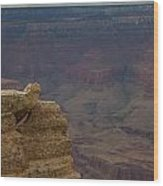 The Grand Canyon Wood Print